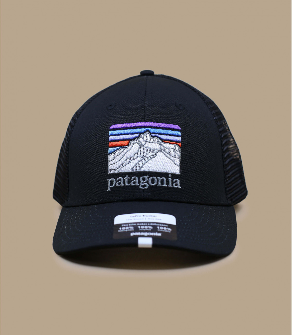 Trucker Patagonia schwarz